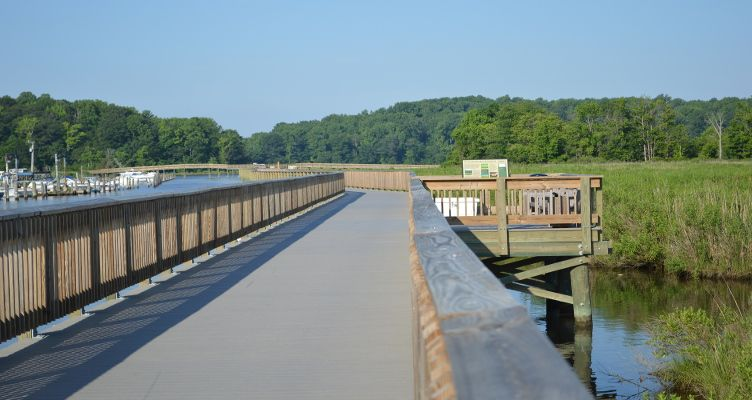Chesapeake Beach Rail Trail: Walking through the Wetlands