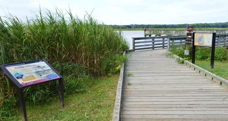 Enjoy Recreation And Nature At Kings Landing Park