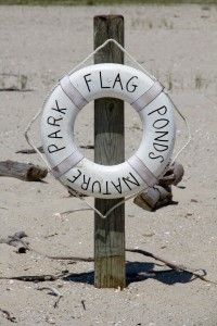 Flag Ponds Nature Park And Beach Buoy