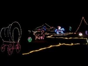 Garden-In-Lights-At-Annmarie-Is-Festive-Family-Fun_02_YourCalvert