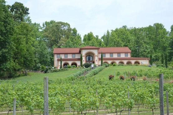 Running Hare Vineyard A World Class Winery Tuscan Villa