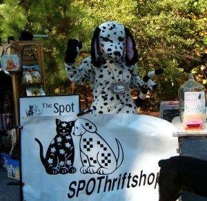 The SPOT thrift shop